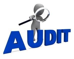 audit8